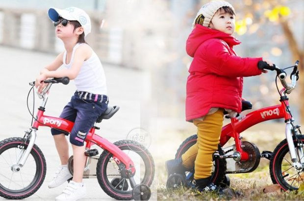 Xe đạp trẻ em Royal Baby Pony RB14B-4